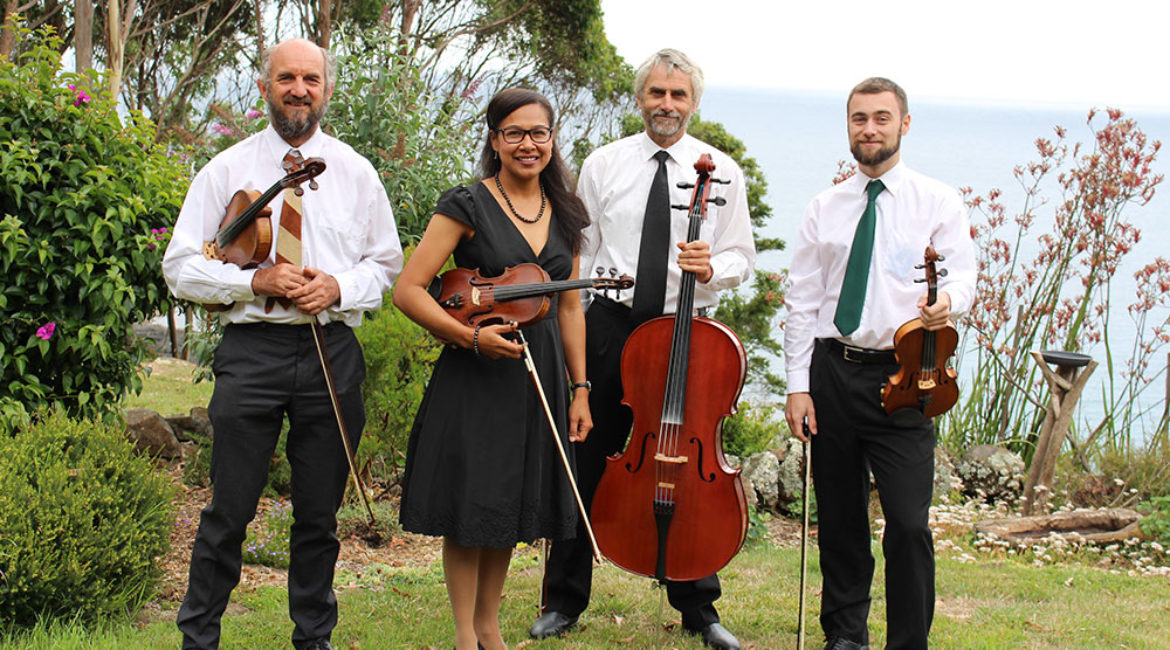 Tarkine Strings – Musicians for Weddings and Events in North West Tasmana